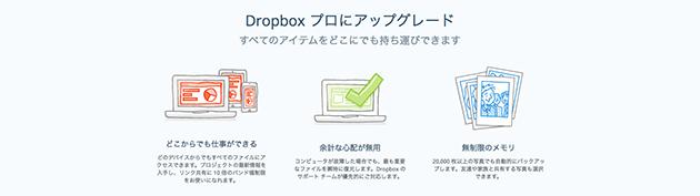 20 Premium Web Service