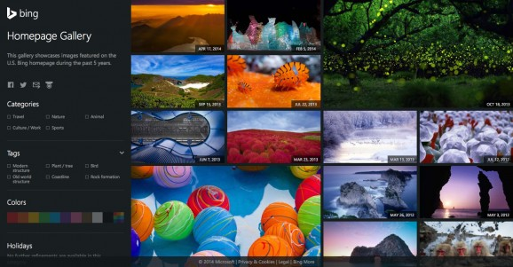 Bing Homepage Gallery 4