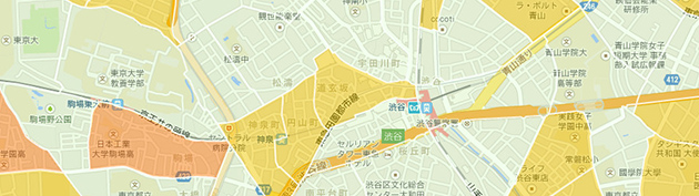 Google Bosai Map 1