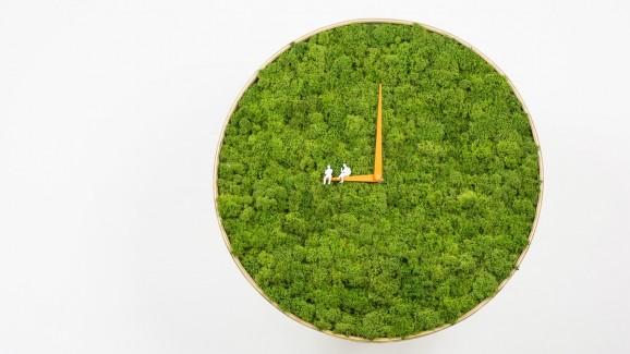 moss clock 2